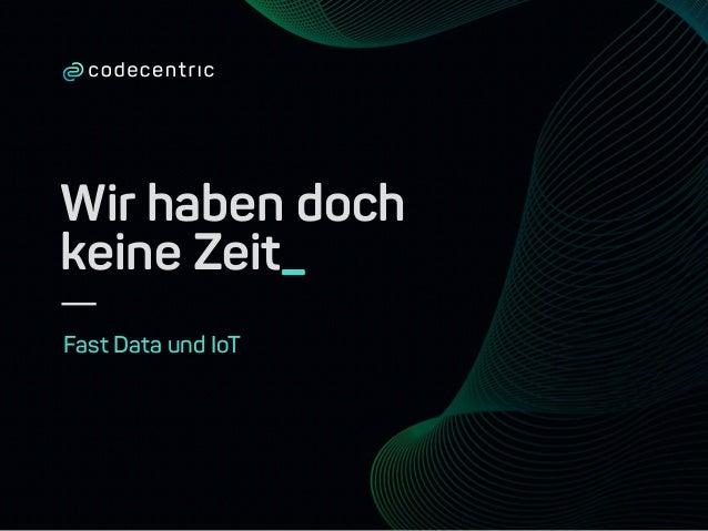 Wir haben doch keine Zeit_ Fast Data und IoT