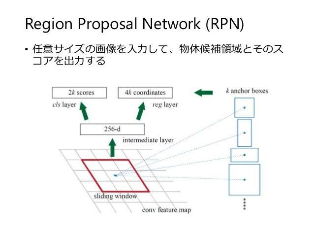 Region Proposal Network (RPN) • 任意サイズの画像を入力して、物体候補領域とそのス コアを出力する