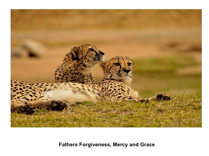 Fathers Forgiveness, Mercy and Grace