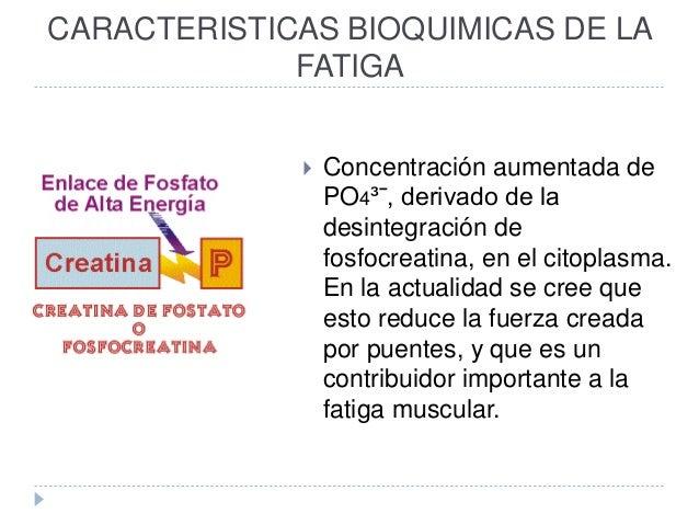 CARACTERISTICAS BIOQUIMICAS DE LA FATIGA  Concentración aumentada de PO4³ˉ, derivado de la desintegración de fosfocreatin...