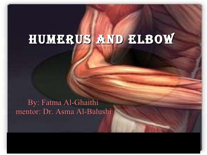 HUMERUS AND ELBOW   <ul><li>By: Fatma Al-Ghaithi </li></ul><ul><li>mentor: Dr. Asma Al-Balushi </li></ul>