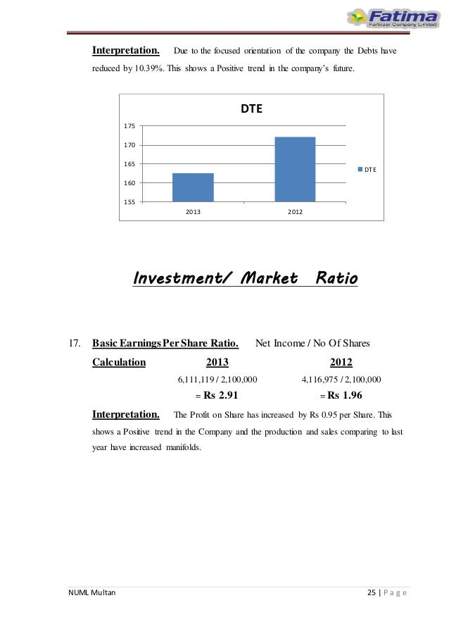 debt equity ratio interpretation pdf