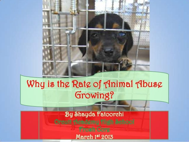 Why is the Rate of Animal Abuse           Growing?         By Shayda Fatoorchi      Orcutt Academy High School            ...