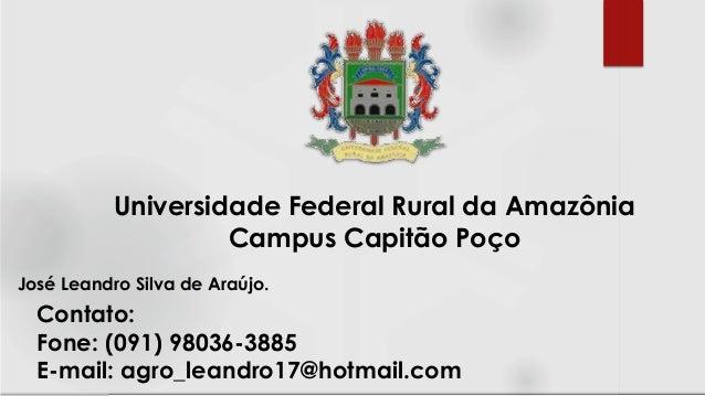 José Leandro Silva de Araújo. Universidade Federal Rural da Amazônia Campus Capitão Poço Contato: Fone: (091) 98036-3885 E...