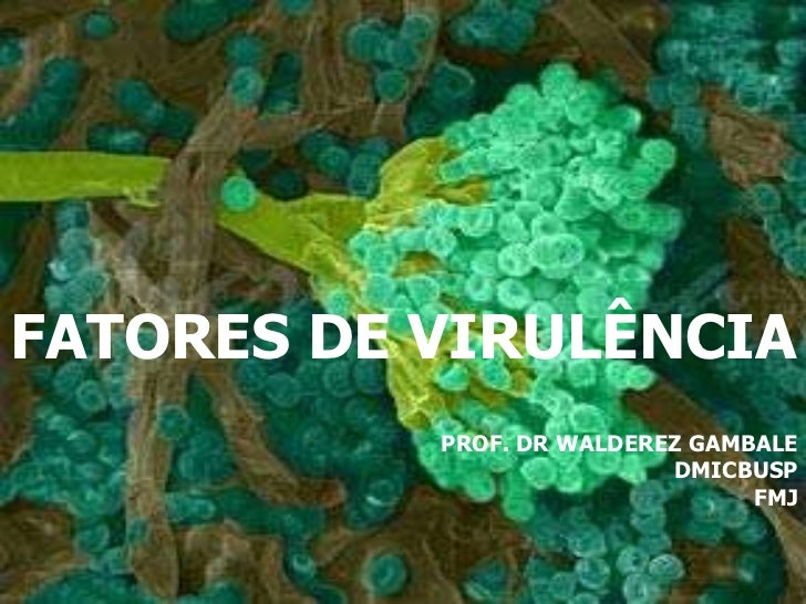 FATORES DE VIRULÊNCIA PROF. DR WALDEREZ GAMBALE DMICBUSP FMJ