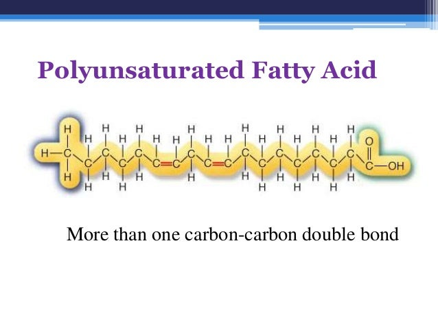 Fatty Acids And Triglycerides
