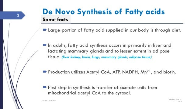 fatty acid sysnthesis Fatty acid synthesis lecture - this lecture explains about the synthesis of fatty acids from acetyl coa and glycerol to make complex fat molecules in cell.