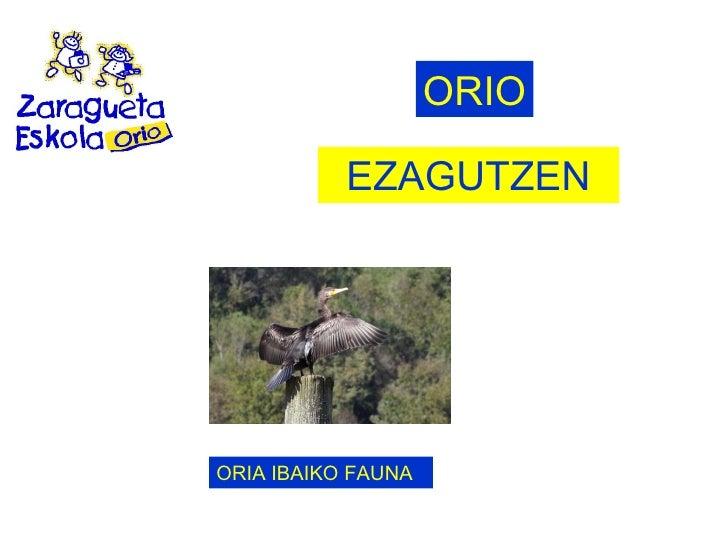 EZAGUTZEN ORIO ORIA IBAIKO FAUNA