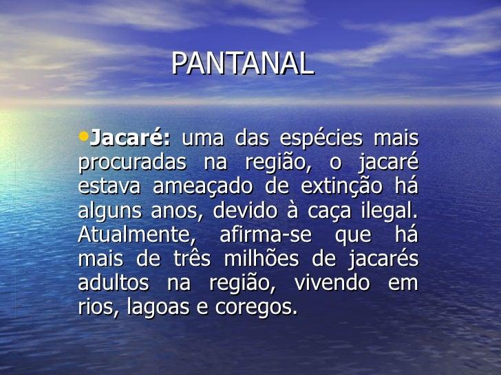 PANTANAL <ul><li>Jacaré:  uma das espécies mais procuradas na região, o jacaré estava ameaçado de extinção há alguns anos,...
