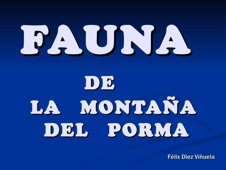 FAUNA    DELA MONTAÑA DEL PORMA        Félix Diez Viñuela
