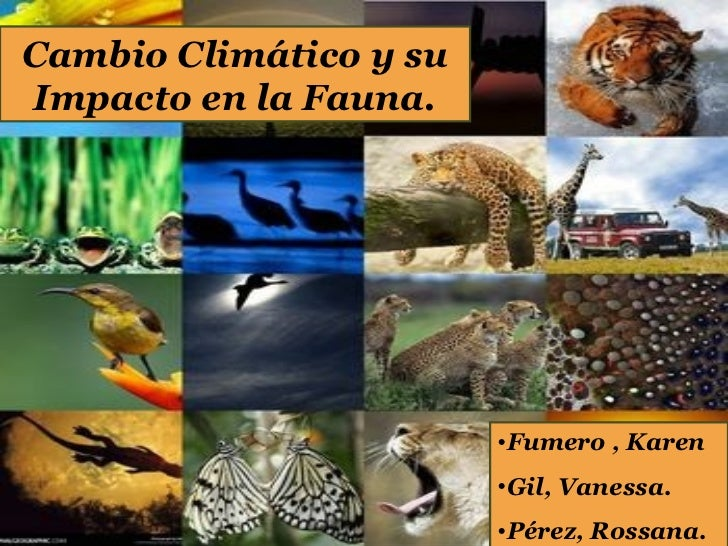 Cambio Climático y suImpacto en la Fauna.                        •Fumero , Karen                        •Gil, Vanessa.    ...