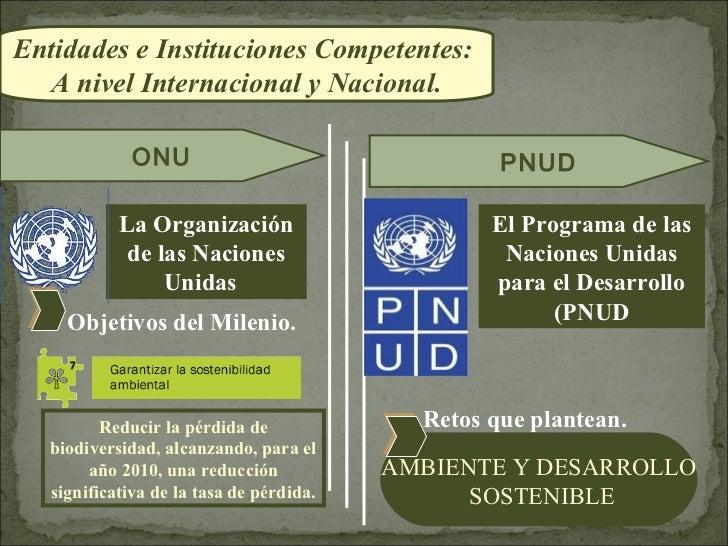 Entidades e Instituciones Competentes:  A nivel Internacional y Nacional.              ONU                                ...