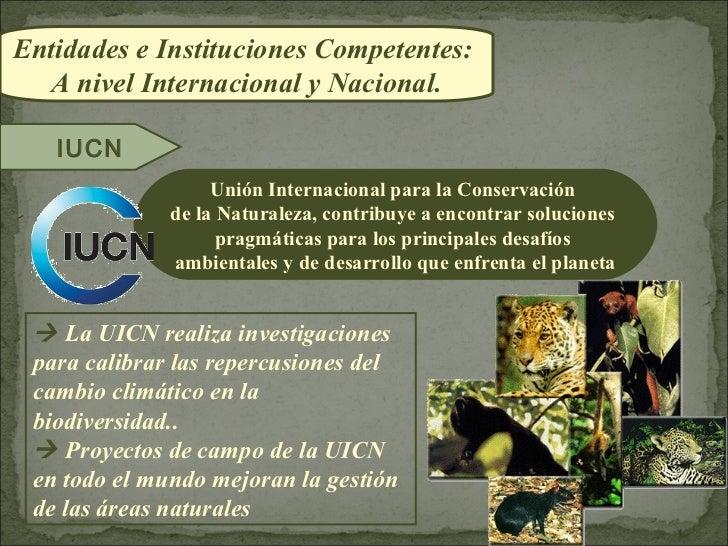 Entidades e Instituciones Competentes:  A nivel Internacional y Nacional.   IUCN                   Unión Internacional par...