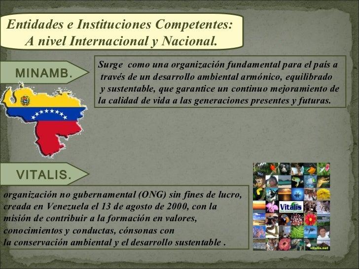 Entidades e Instituciones Competentes:  A nivel Internacional y Nacional.                     Surge como una organización ...