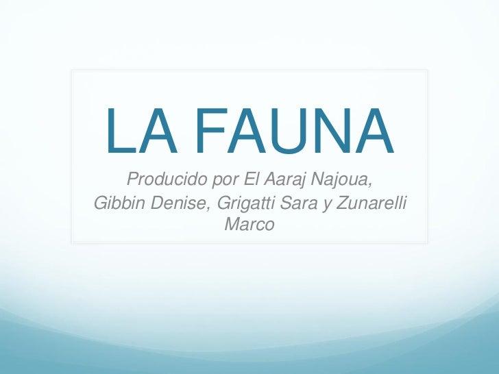 LA FAUNA   Producido por El Aaraj Najoua,Gibbin Denise, Grigatti Sara y Zunarelli                Marco