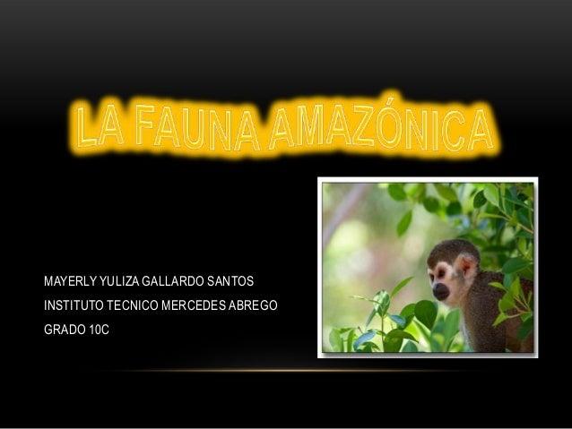 MAYERLY YULIZA GALLARDO SANTOS INSTITUTO TECNICO MERCEDES ABREGO GRADO 10C