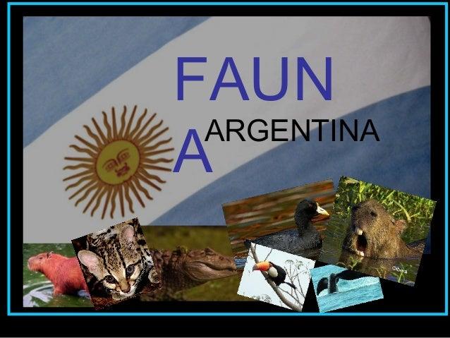 FAUN A ARGENTINA