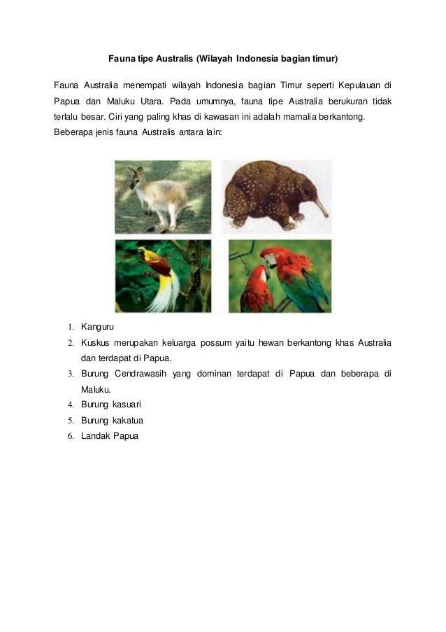 55 Koleksi Gambar Hewan Asiatis Australis Dan Peralihan Gratis