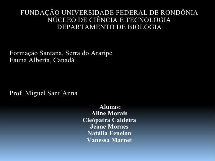 FUNDAÇÃO UNIVERSIDADE FEDERAL DE RONDÔNIA NÚCLEO DE CIÊNCIA E TECNOLOGIA DEPARTAMENTO DE BIOLOGIA Formação Santana, Serra ...