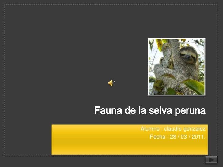 Fauna de la selva peruna<br />Alumno : claudio gonzalez<br />Fecha : 28 / 03 / 2011.<br />