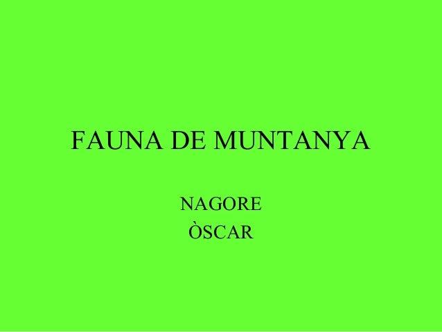 FAUNA DE MUNTANYA      NAGORE       ÒSCAR