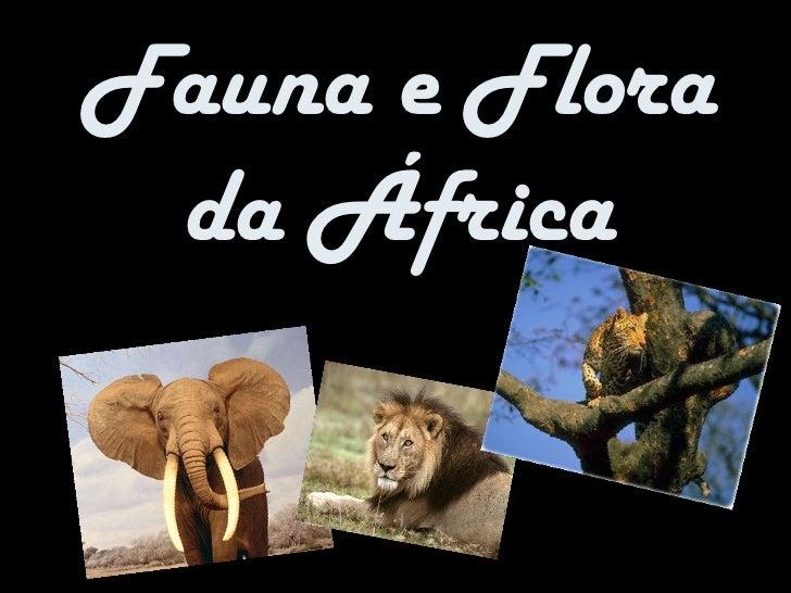 Fauna e Flora da África