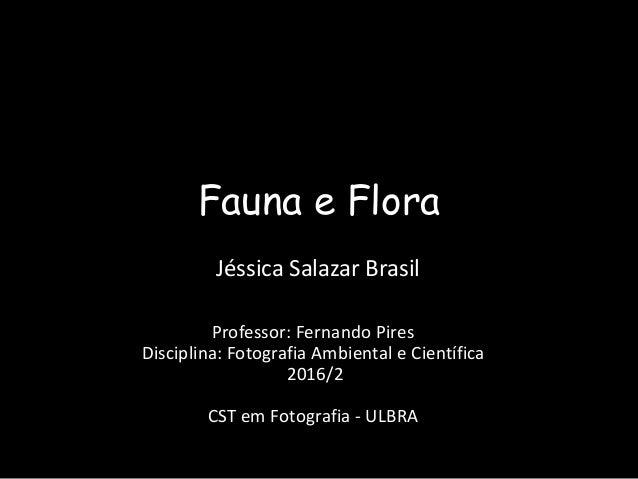 Fauna e Flora Jéssica Salazar Brasil Professor: Fernando Pires Disciplina: Fotografia Ambiental e Científica 2016/2 CST em...