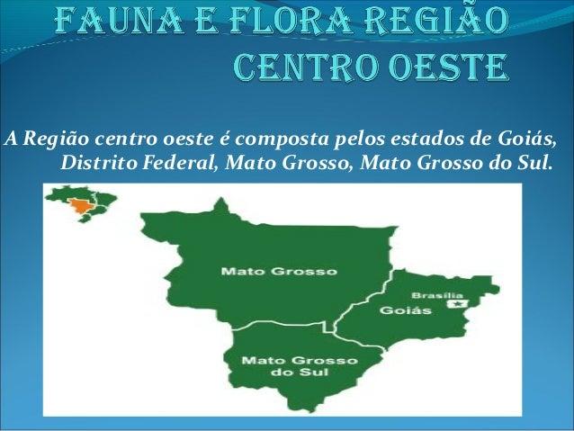 A Região centro oeste é composta pelos estados de Goiás, Distrito Federal, Mato Grosso, Mato Grosso do Sul.