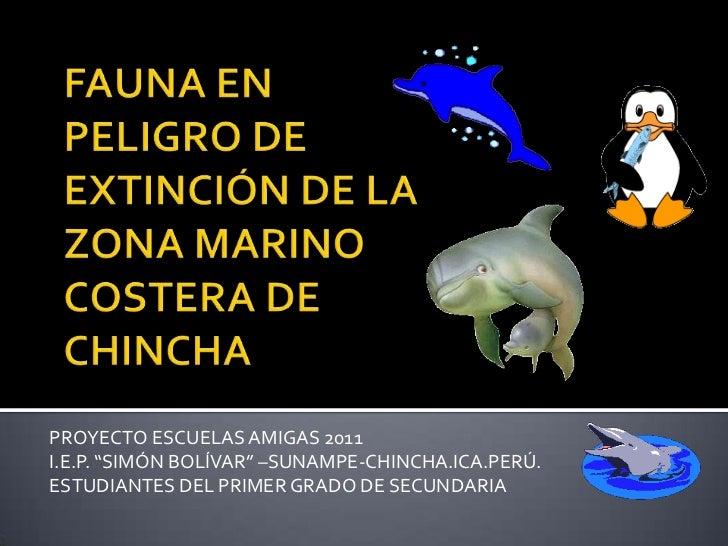 """FAUNA EN PELIGRO DE EXTINCIÓN DE LA ZONA MARINO COSTERA DE CHINCHA<br />PROYECTO ESCUELAS AMIGAS 2011<br />I.E.P. """"SIMÓN B..."""