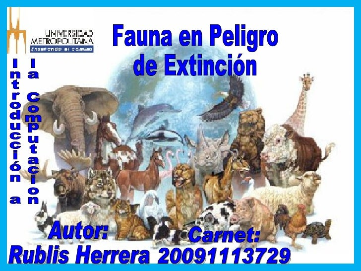 Fauna en Peligro de Extinción Autor: Rublis Herrera Carnet: 20091113729 Introducción a la Computacion