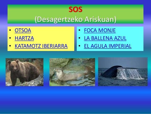 SOS (Desagertzeko Ariskuan) • OTSOA • HARTZA • KATAMOTZ IBERIARRA • FOCA MONJE • LA BALLENA AZUL • EL AGULA IMPERIAL