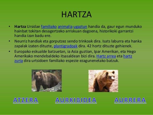 Fauna iberikoa sl Elexalde Slide 3