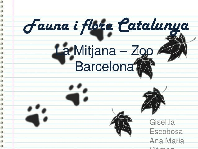 Fauna i flora CatalunyaLa Mitjana – ZooBarcelonaGisel.laEscobosaAna Maria