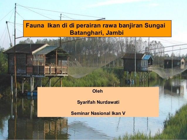 Fauna Ikan di di perairan rawa banjiran Sungai Batanghari, Jambi  Oleh Syarifah Nurdawati Seminar Nasional Ikan V