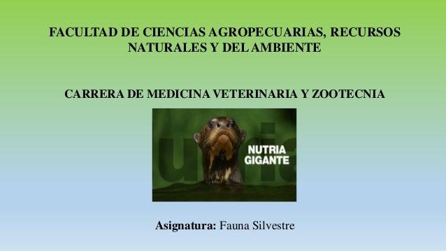 FACULTAD DE CIENCIAS AGROPECUARIAS, RECURSOS NATURALES Y DELAMBIENTE CARRERA DE MEDICINA VETERINARIA Y ZOOTECNIA Asignatur...