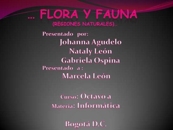 1. Región caribe      diapositiva 31.1 Flora1.2 Fauna2. Region amazonica   diapositiva 52.1 Flora2.2 Fauna3. Región insula...