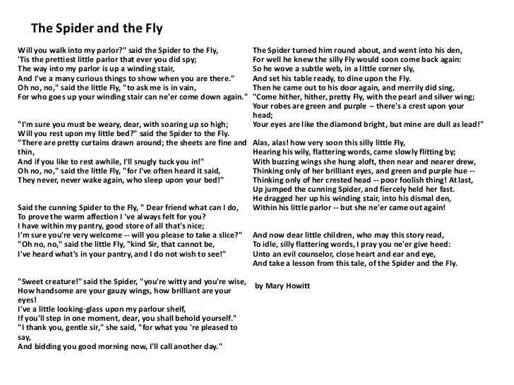 Favorite poems of second grade 22 the spider ccuart Image collections