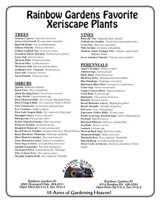 ... San Antonio, Texas. Rainbow Gardens Favorite Xeriscape PlantsTREES ...