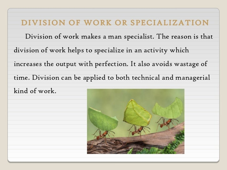principle of specialization One of the founding principles of the ideal city is that each person should  specialize in an occupation that he is specifically suited for education  encourages.