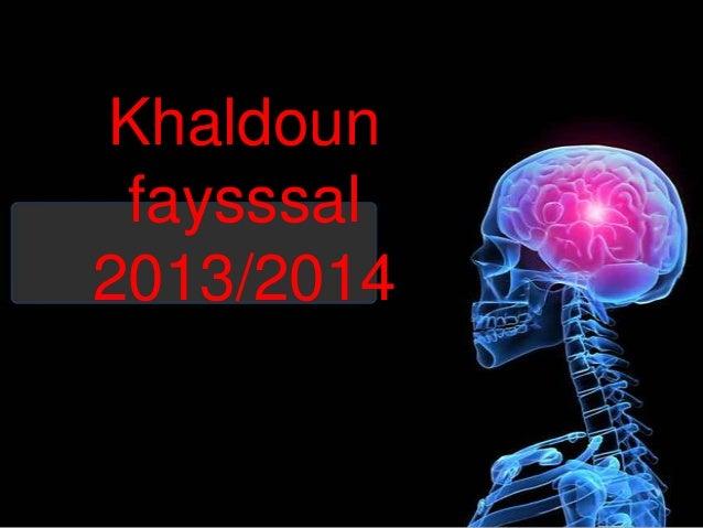 Khaldoun faysssal 2013/2014