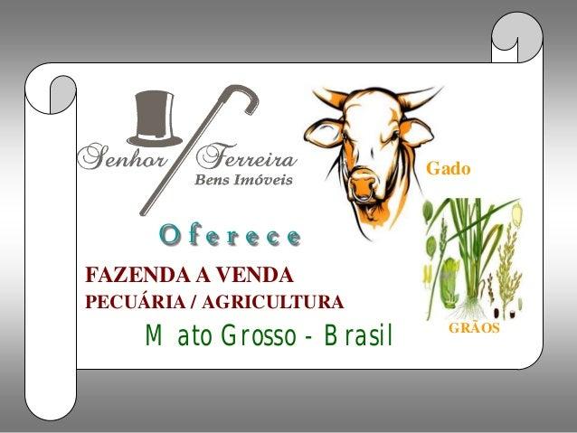 Fazenda a venda             Gado      OfereceFAZENDA A VENDAPECUÁRIA / AGRICULTURA                              GRÃOS     ...