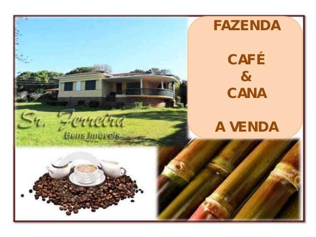 FAZENDA CAFÉ  & CANAA VENDA