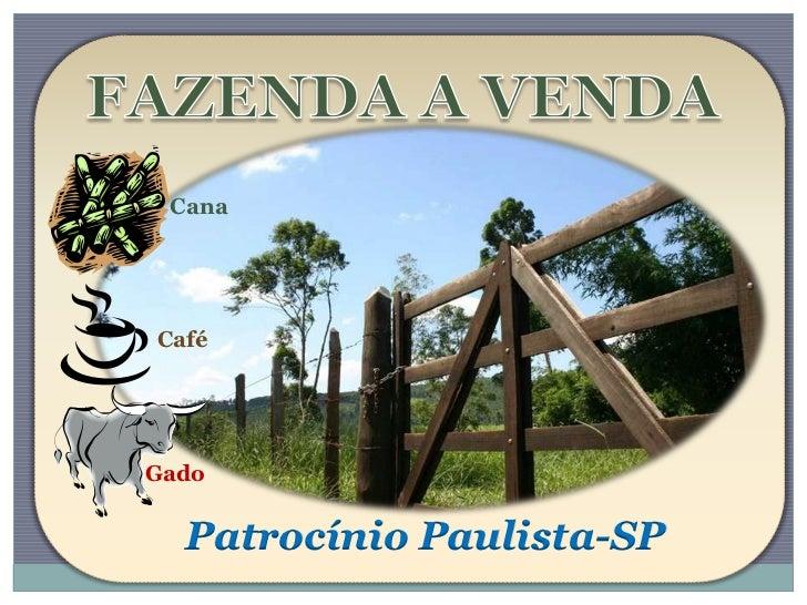CanaCaféGado  Patrocínio Paulista-SP