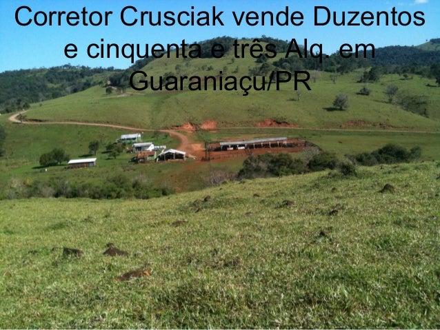 Corretor Crusciak vende Duzentos e cinquenta e três Alq. em Guaraniaçu/PR