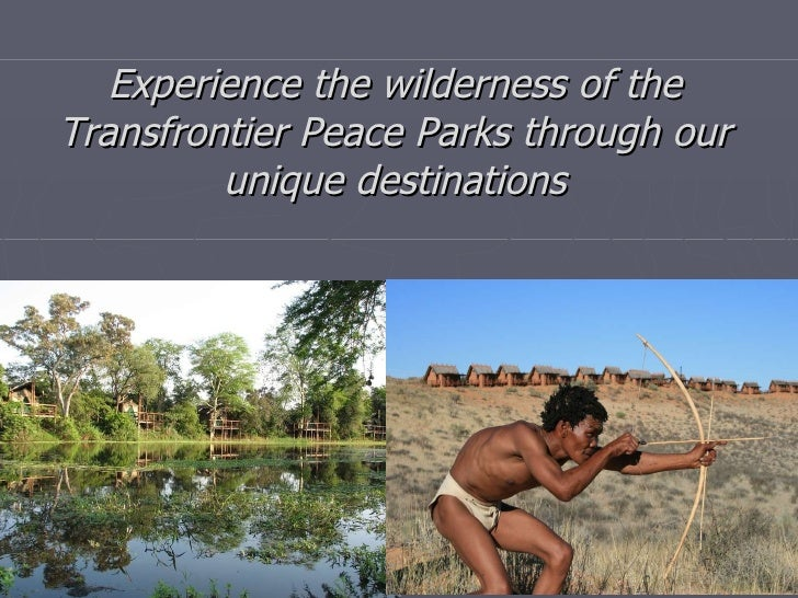 Experience the wilderness of the Transfrontier Peace Parks through our unique destinations