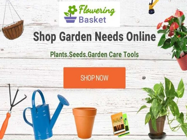 FloweringBasket.com Is Indiau0027s Largest Online Garden Shop For Nature Lovers  To Buy Live Plants ...