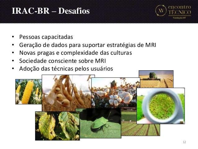 • Pessoas capacitadas • Geração de dados para suportar estratégias de MRI • Novas pragas e complexidade das culturas • Soc...