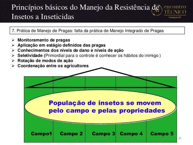 Campo1 Campo 4 Campo 5Campo 3Campo 2 População de insetos se movem pelo campo e pelas propriedades 7. Prática de Manejo de...