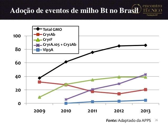 Adoção de eventos de milho Bt no Brasil 0 20 40 60 80 100 2009 2010 2011 2012 2013 Total GMO Cry1Ab Cry1F Cry1A.105 + Cry2...