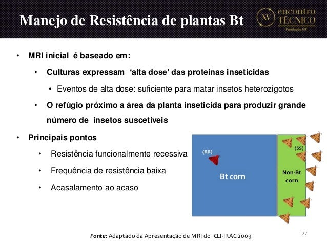 Manejo de Resistência de plantas Bt Bt corn Non-Bt corn Fonte: Adaptado da Apresentação de MRI do CLI-IRAC 2009 27 • MRI i...